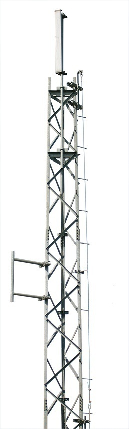 Trylon Cougar Safety Climb System