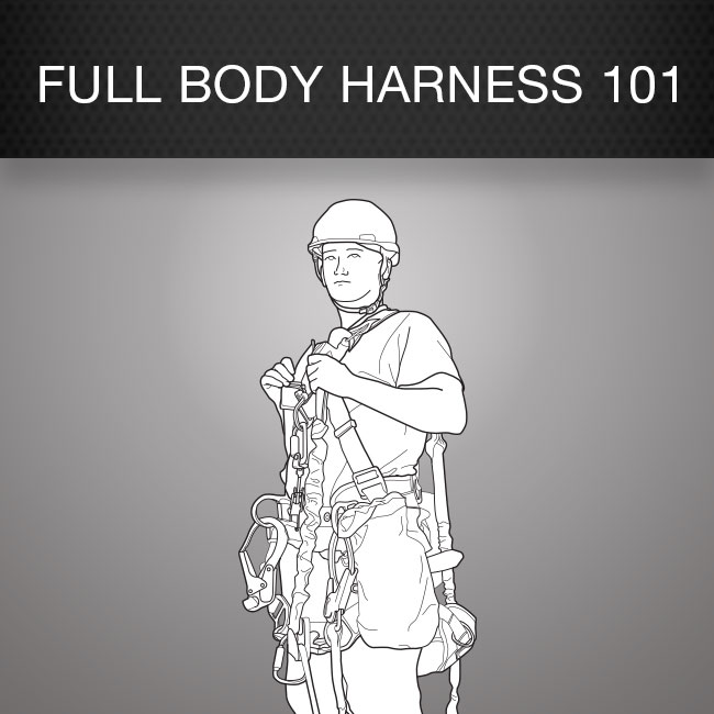 Fall Protection Harness (Full Body Harness 101) Safety Poster by Columbia Safety and Supply